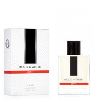<DILIS> Туалетная вода &quot;Black&amp;White&quot; (Блэк энд Уайт) 100мл муж